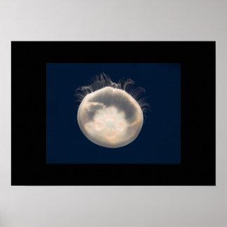 Moon Jelly Fish Beach Animal Scary Party Destiny Poster