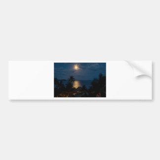 Moon one will bora will bora bumper sticker