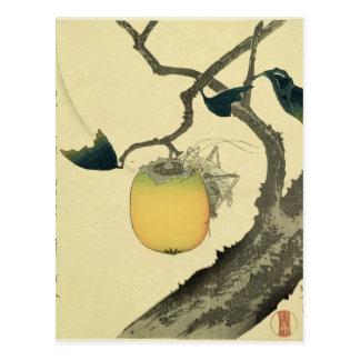 Moon, Persimmon and Grasshopper, 1807 Postcard