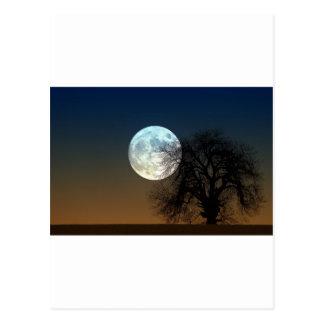 Moon Rise Postcard
