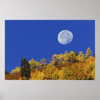 Moon setting at sunrise, Gunnison National Poster
