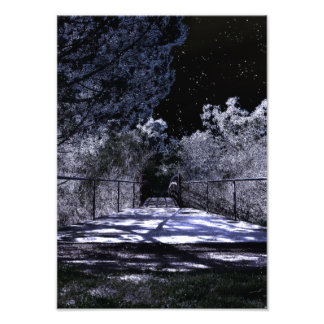 Moon Shadows Photo Print