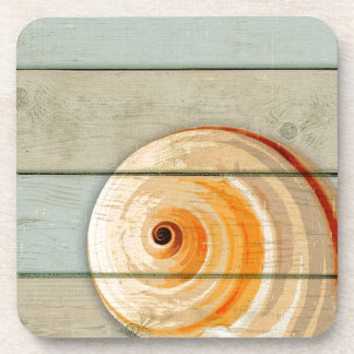Moon Snail Coaster