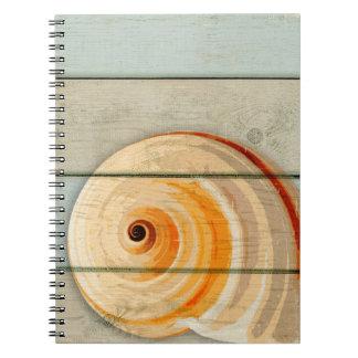 Moon Snail Notebooks