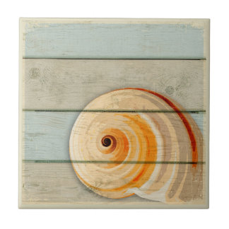 Moon Snail Small Square Tile