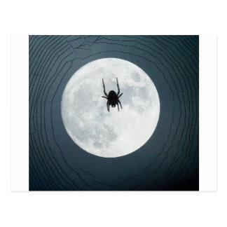 Moon spider postcard