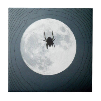 Moon spider tile