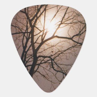 Moonlight Dream Plectrum
