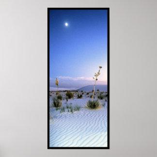 Moonlight Yucca Panorama Poster