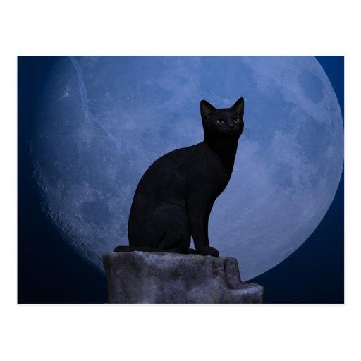 Moonlit Cat Post Card