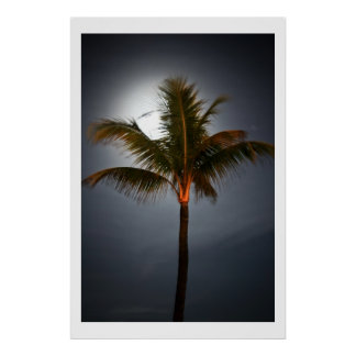 Moonrise on Palm Poster
