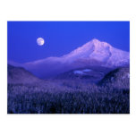 Moonrise over Mt Hood winter, Oregon Postcard