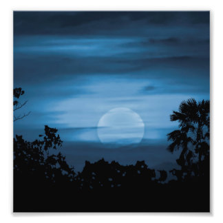 Moonscape Silhouette Ilustration Art Photo
