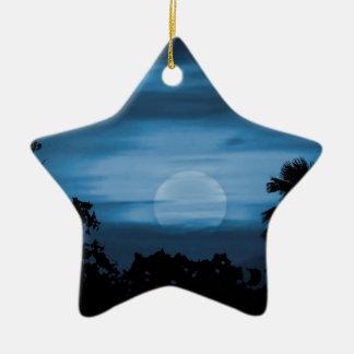 Moonscape Silhouette Ilustration Print Ceramic Star Decoration