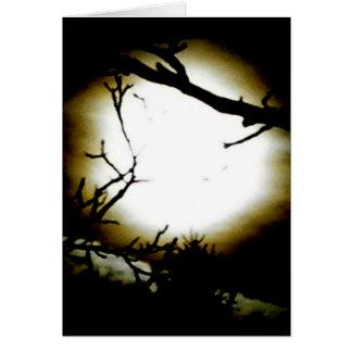 Moonshine Card