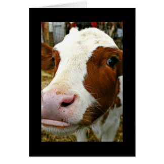 Moooving Up - Congratulations On Your Promotion! Card