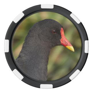 Moorhen Poker Chips