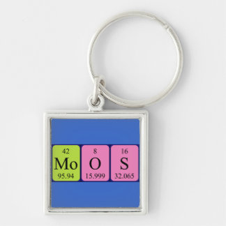 Moos periodic table name keyring key chain