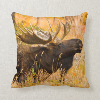 Moose (Alces Alces) Bull In Golden Willows Cushion