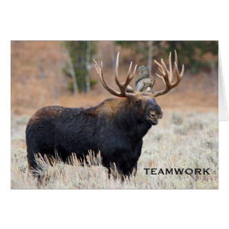 "Moose and Squirrel ""TEAMWORK"" Greeting Card"