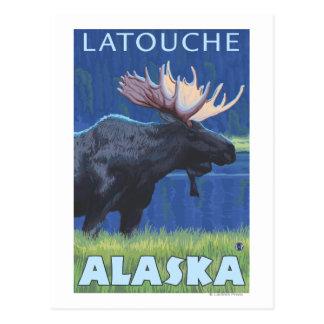 Moose at Night - Latouche, Alaska Postcard