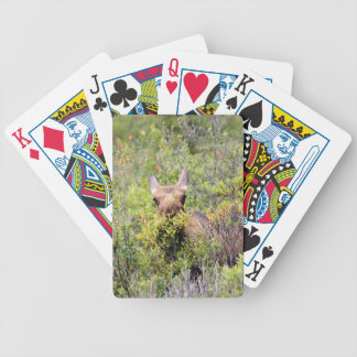 moose bicycle playing cards
