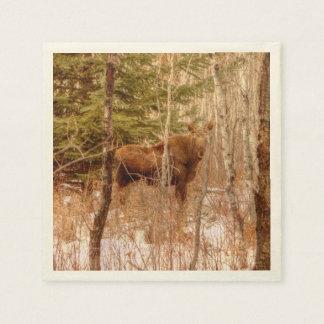 Moose Calf Paper Serviettes