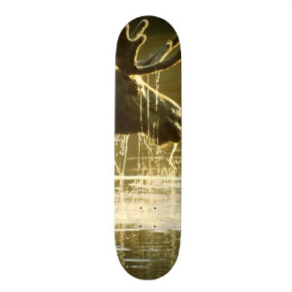 Moose Dipping His Head Into Water Skate Board Deck