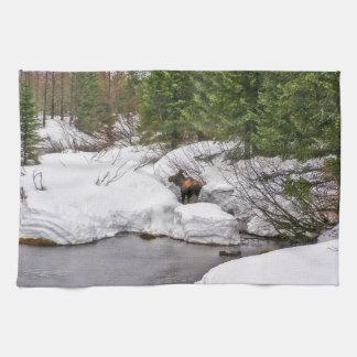 Moose in Alaska Kitchen Towel Western Wildlife