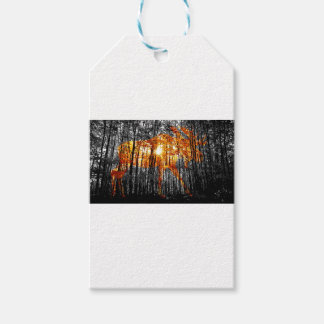 Moose in the Trees Gift Tags
