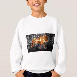Moose in the Trees Sweatshirt