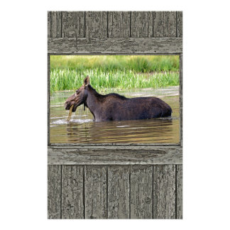 Moose in water custom stationery