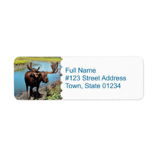 Moose Mailing Label Return Address Label