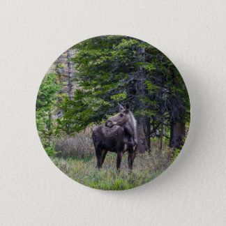 Moose Mother 6 Cm Round Badge