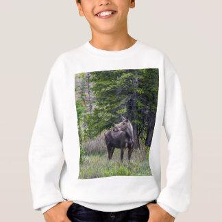 Moose Mother Sweatshirt