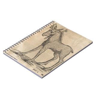 Moose Note Books
