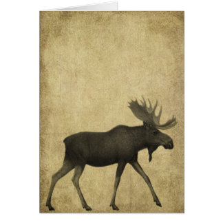 Moose On The Loose- Prim Lil Note Cards