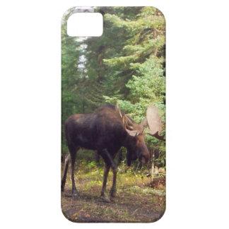 Moose samsung case