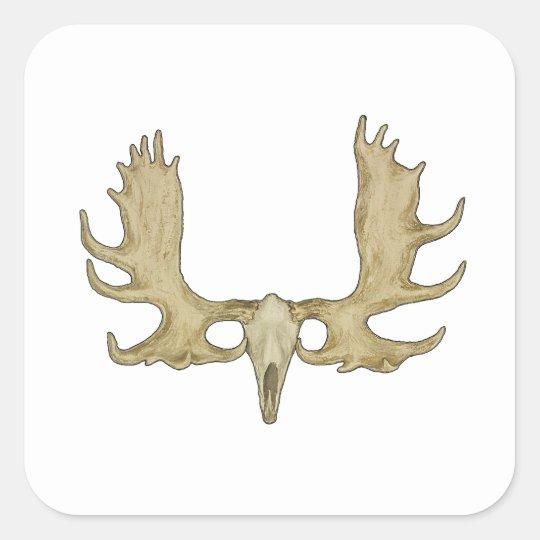 Moose Skull - Antlers Illustration Square Sticker