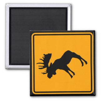 Moose Symbol Yellow Diamond Warning Sign Square Magnet