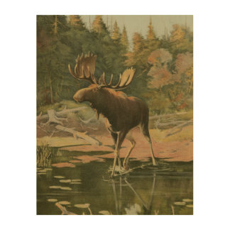 Moose Walking in Water Wood Wall Art