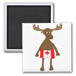 Moose wearing Canadian boxers Square Magnet