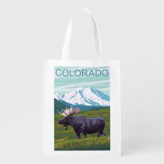 Moose with MountainColorado