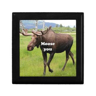 Moose you: Alaskan moose Gift Box