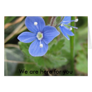 more spring flowers 10 001, We are here for you Card