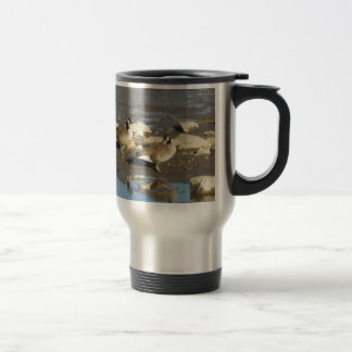 More Water Stainless Steel Travel Mug