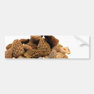 Morel Mushroom Bumper Sticker