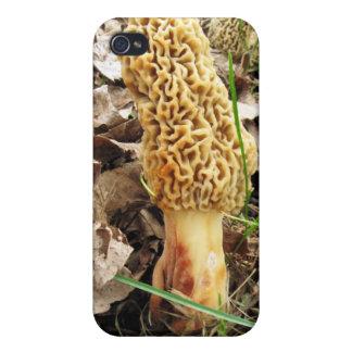 Morel Mushroom  iPhone 4 Case