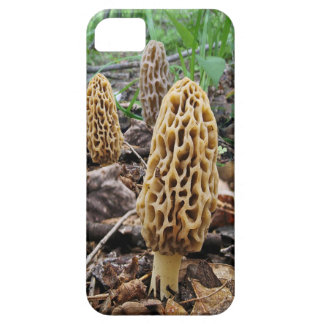 Morels iPhone 5 Covers