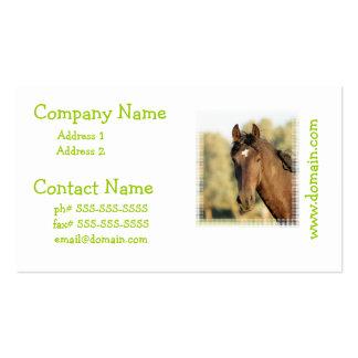 Morgan Horse Business Cards